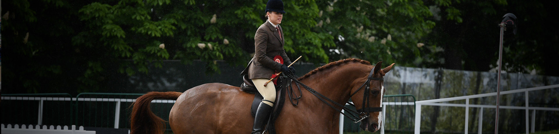 RWHS-2020-Headers-National-Results